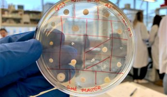 Tiny Earth: Advancing antibiotic discoveries through undergraduate research
